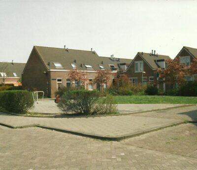 Chrysanthof